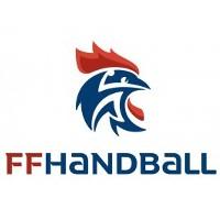 Logo Fédération française de handball
